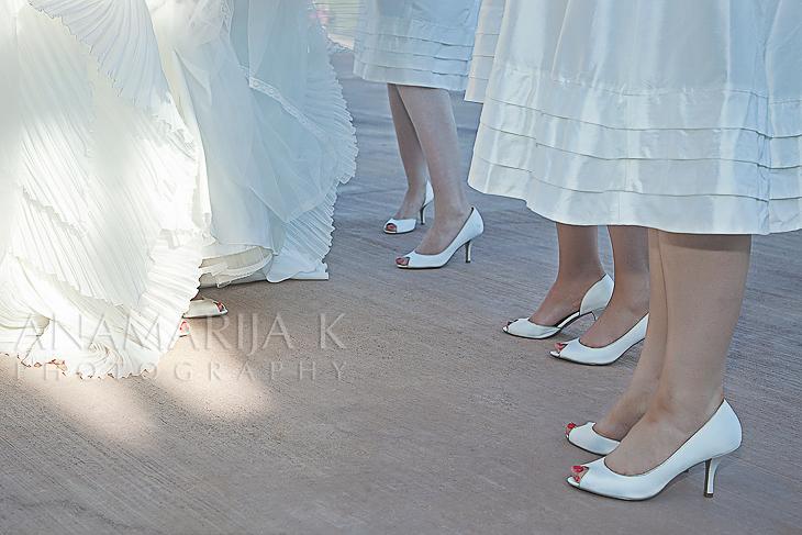 la novia y sus damas de honor