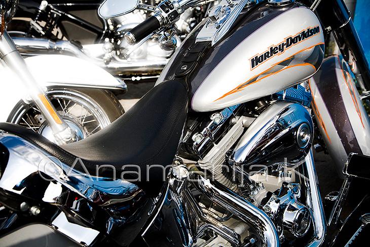 Harleys Weekend in Palma de Malorca
